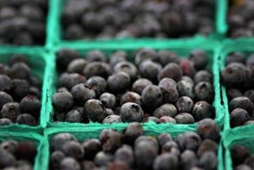 Blueberries from Kimball Fruit Farm in Pepperell were for sale at the Brookline Farmers Market.